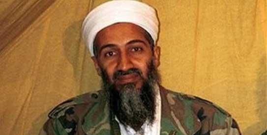 Osama bin Laden, Al Qaeda