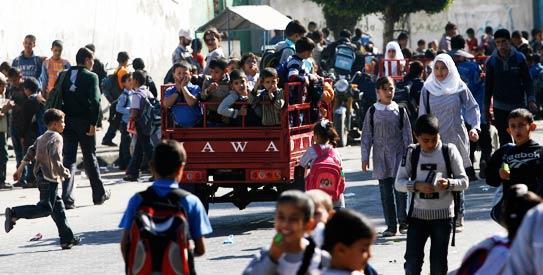 Palestinian Tuk Tuk, gaza fuel, gaza business, fuel, gaza, tuk tuk