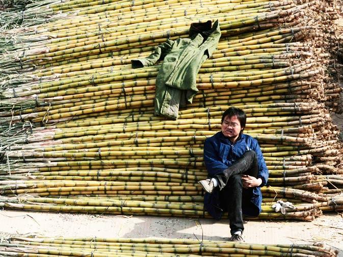 A vendor waits for customers as he sells sugarcanes at an open-air market in Nanjing, Jiangsu province.