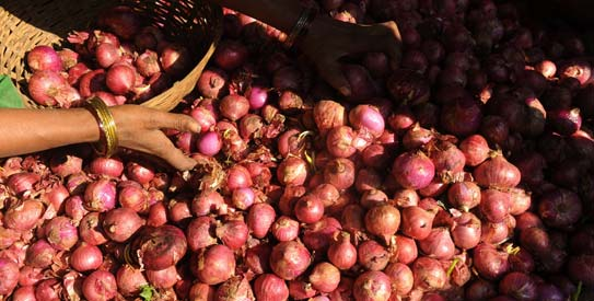 Onions, coconuts and the politics of taste in S.Asia
