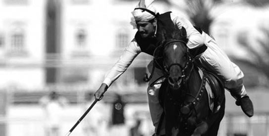 Pakistan's tent-pegging squad won three medals: two silver and one bronze.