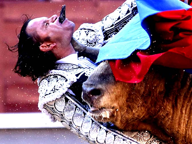 Spanish Bullfighter Julio Aparicio is gored by a bull during a bulfight of the San Isidro Feria at the Las Ventas bullring in Madrid, on May 21, 2010. - Photo by AFP.