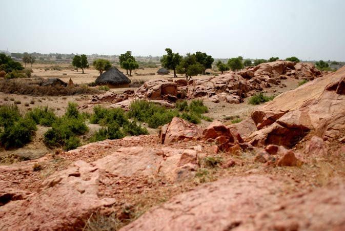 The arid beauty of Tharparkar