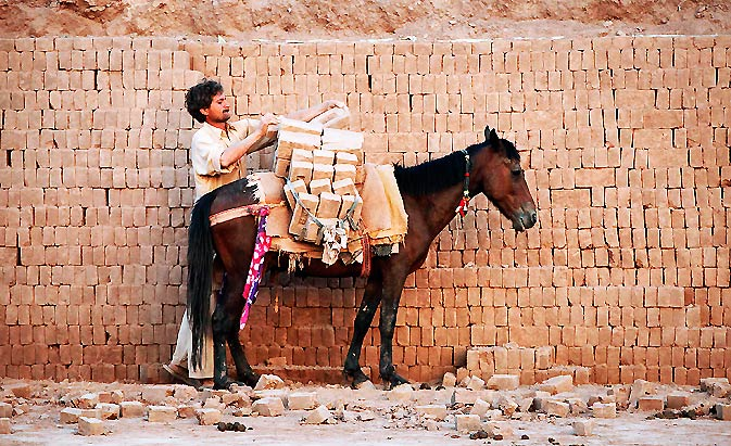 A labourer loads bricks onto a mule to transport them to be baked in a kiln at a brick factory in Islamabad. – Photo by Reuters