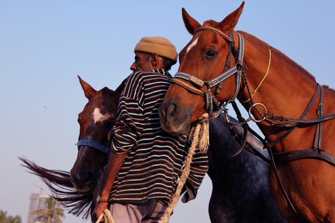 On the trot: The Equestrian Club Karachi