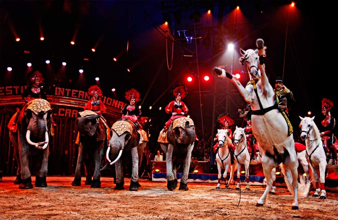 The German Casselly family perform with African elephants and horses during the opening ceremony of the 36th  Monte-Carlo International Circus Festival in Monaco, Thursday, Jan 19, 2012. - AP Photo