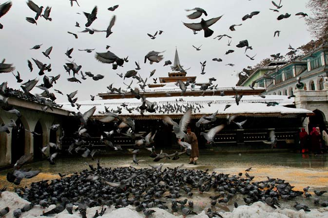 A Kashmiri devotee feeds pigeons outside the shrine of Hazrat Sheikh Hamza Makhdoomi on his death anniversary in Srinagar, India, Thursday, Jan. 19, 2012. Thousands of devotees thronged the shrine on the last day of the 13-day festival. - AP Photo