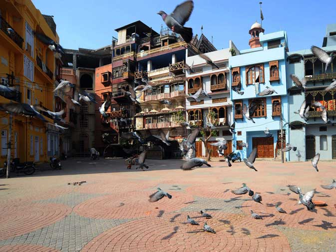 This photograph taken on October 29, 2011 shows pigeons flying in the old residential walled city of Lahore.