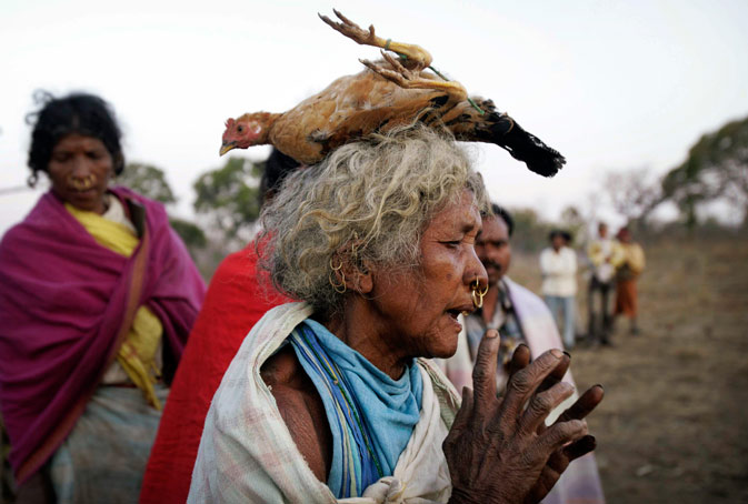 An Indian Dongaria Kondh tribal woman carries a chicken offered for sacrifice on her head as she dances during the annual festival of Niyam Raja in Lanjigarh at the sacred Niyamgiri Hill. ?AP Photo