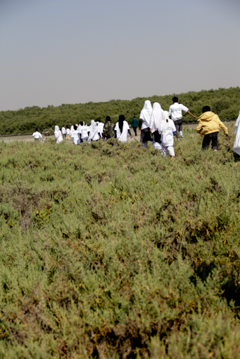Students walking towards the site of mangroves plantation.