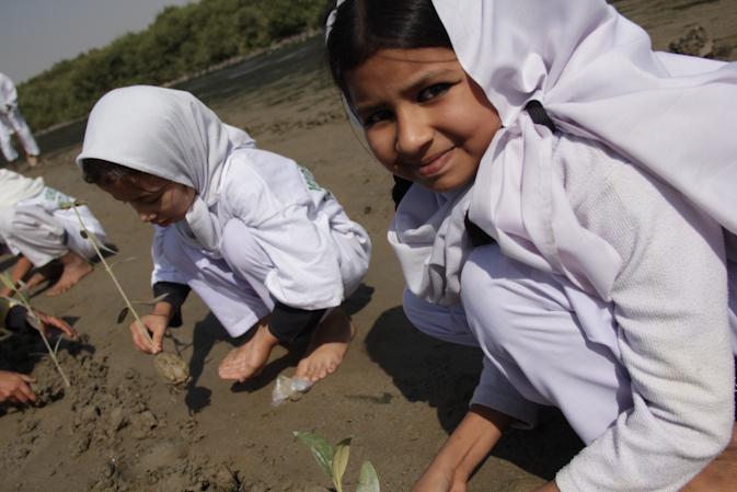 Alvina, a grade five student planting mangrove saplings.