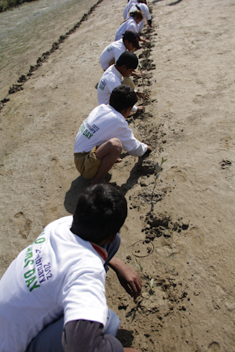 A row of students' busy planting.