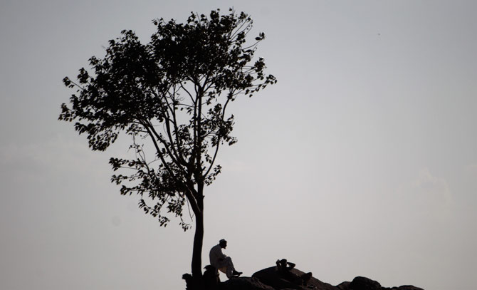 Pakistani men take a shelter from the sun under a tree, on the outskirts of Islamabad, Pakistan, Thursday. ? AP Photo