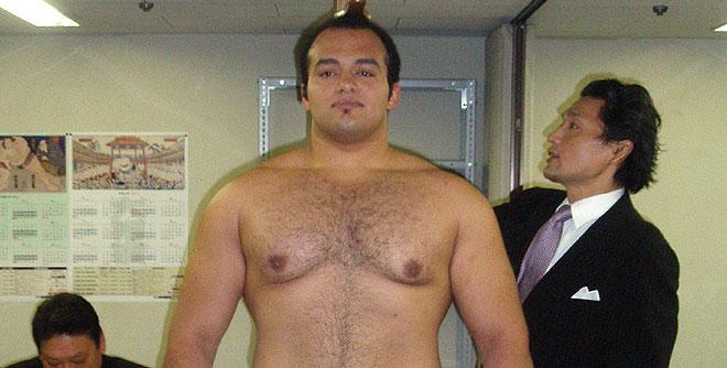 sumo wrestling, sumo