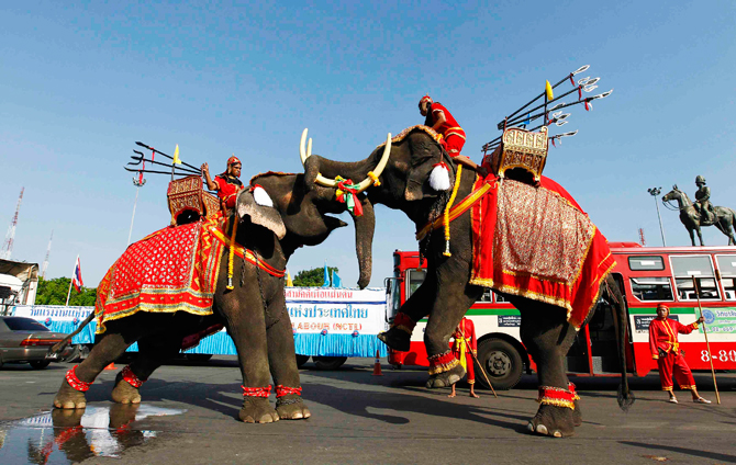 Elephants perform during a May Day rally at the Royal Plaza in Bangkok. ? Photo by Reuters.