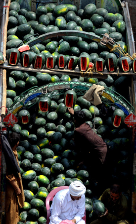 Pakistani farmers sit in a truck loaded with watermelons as they bargain with dealers at a fruit market in Lahore. Watermelon is considered an essential seasonal fruit to beat the summer heat and avoid dehydration. ? Photo by AFP