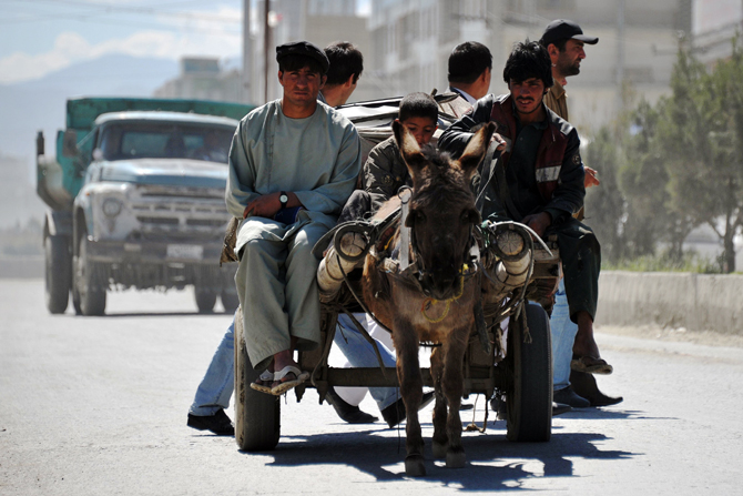 A donkey pulls a cariage transporting goods in Kabul on May 1, 2012. The World Bank, one of the major international organisations that have financially supported Afghanistan in the last decade and committed to continue funding Afghanistan, will provide 150 million USD in grant annually to this country, even though rampant corruption has persisted since the last ten years. ? Photo by AFP.
