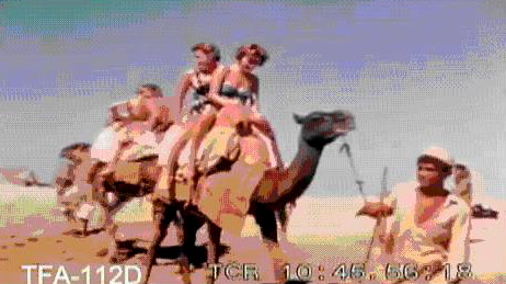 American tourists enjoy a camel ride at Karachi's Clifton beach in 1960.  (Video grab from a 1960 tourism promotional film made by Pan Am)