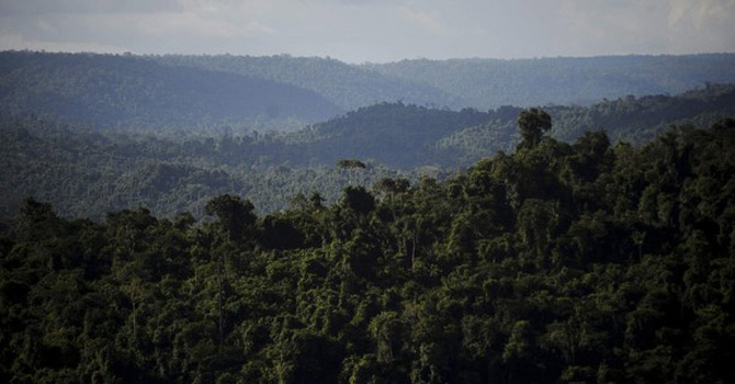 An overview of the Carajas National Forest in the Amazon Basin.—Reuters Photo
