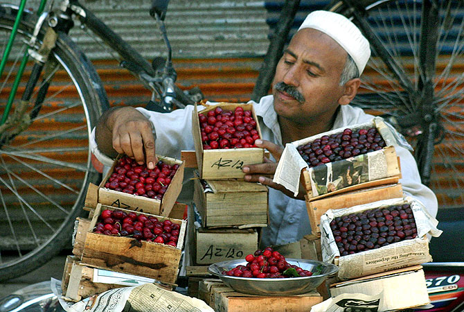 A vendor displays his stock of cherries at a roadside stall in Peshawar, Pakistan. -Photo by APP