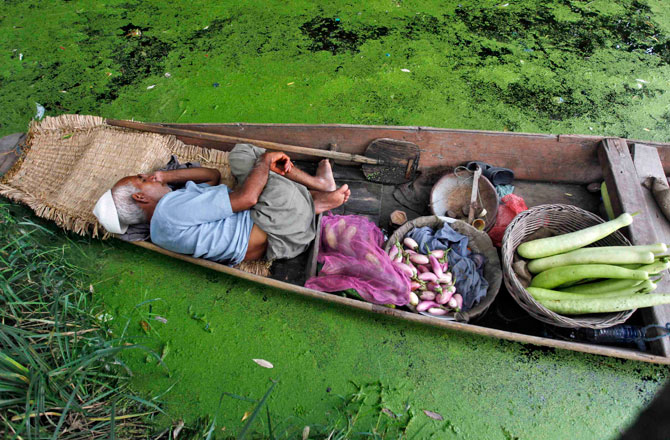 A Kashmiri vegetable vendor takes a nap in his boat at Dal Lake in Srinagar July 30, 2012. ? Photo by Reuters