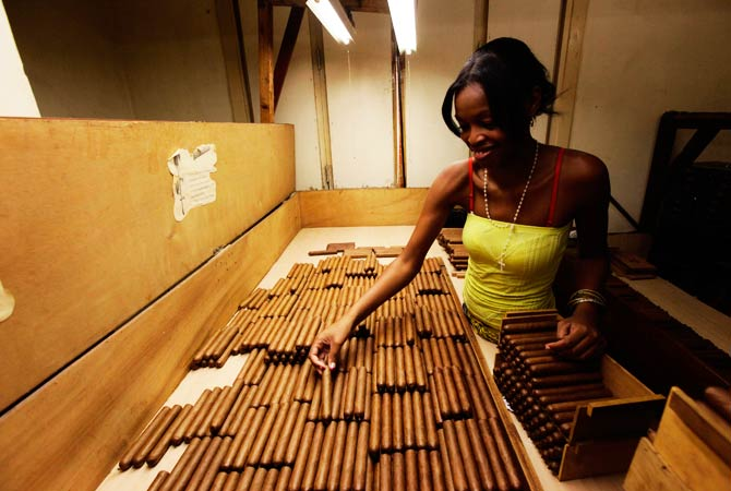 A woman sorts the cigars before they are packaged. ? Photo by Reuters