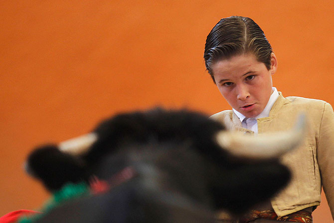 Apprentice bullfighter Juan Pedro Llaguno, 12, looks at a bull during an Under 14 Apprentice Bullfighting competition at the Arroyo bullring in Mexico City September 8, 2012.