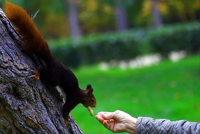 [Epitome of trust.]