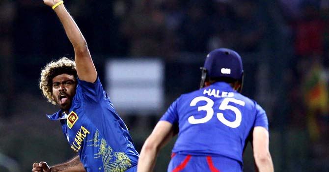 Lasith Malinga celebrates taking the wicket of England's Alex Hales ? Photo by Reuters