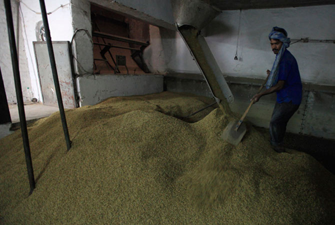 A worker at Pakistan's lone beer maker, Murree Brewery, prepares barley grains at the factory in Rawalpindi November 10, 2012.