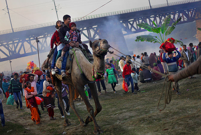 Indian Hindu children enjoy a camel ride on the banks of the holy Yamuna River during the final day of Chhath Puja festival in New Delhi.?Photo by AP