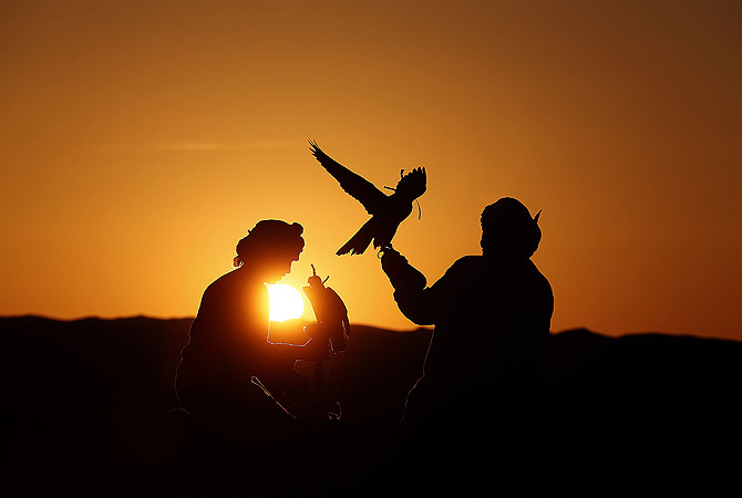Emirati men hold their falcons at the Liwa desert. ? AFP Photo