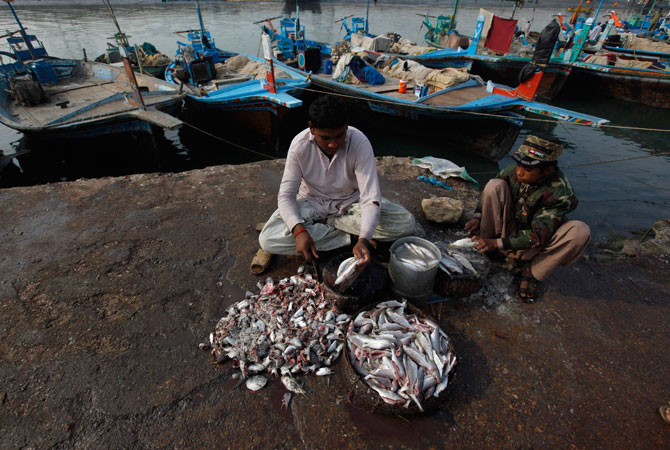 Boys cut and clean fish as they sell them along the harbour in Ibrahim Hyderi, some 17 km (11 miles) from Karachi December 7, 2012.