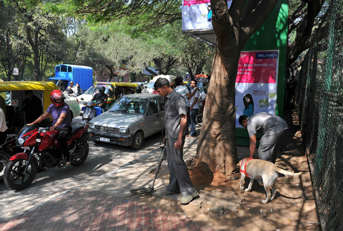 Indian bomb squad officials carry out a routine check outside The M. Chinnaswamy Cricket Stadium in Bangalore on December 24, 2012. Police bomb squads with sniffer dogs combed the Bangalore stadium as part of a massive security operation for the start of Pakistan's first cricket tour to India in five years.