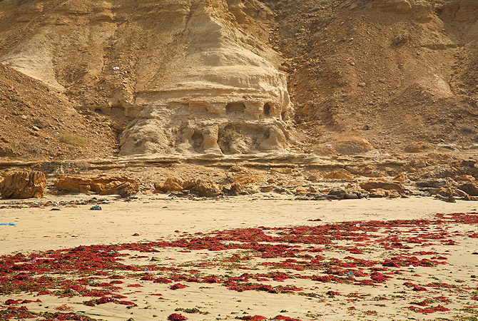 Carvings by nature. Red sea weed add colour to the golden beach.