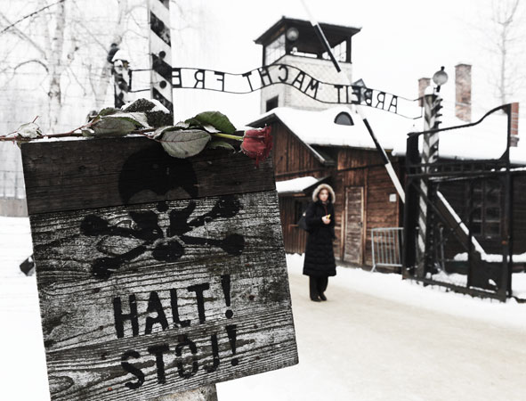 A rose is placed on a sign depicting a skull and reading ?Stop? in front of the gate of the former Nazi concentration camp Auschwitz-Birkenau in Oswiecim, Poland. A ceremony took place at the site 68 years after the liberation of the death camp by Soviet troops, in remembrance of the victims of the Holocaust. ?Photo by AFP