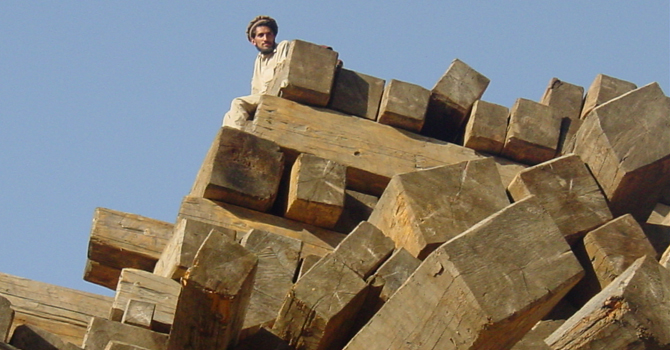 Cutting timber in Kohistan. -Photo by author