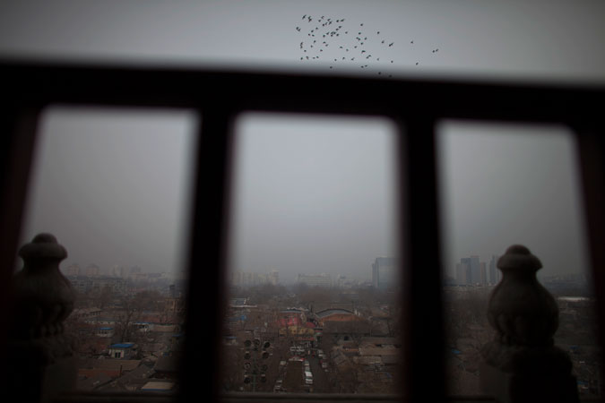 Pigeons fly over the courtyard of a neighbourhood on a hazy day in central Beijing, China. One of Beijing's worst rounds of air pollution kept school children indoors and sent coughing residents to hospitals. ?Photo by AP