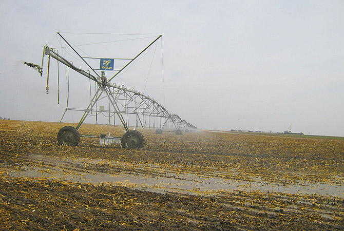 A sprinkler is in use near Dodge City, Kansas. The government declared much of the central and southern Wheat Belt a natural disaster area on January 9, 2013, due to persistent drought that imperils this year's winter wheat harvest.?Photo by Reuters
