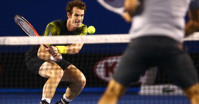murray, andy murray, roger federer, murray federer, 2013 australian open, australian open, tennis