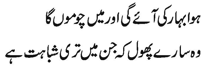 sahil copy