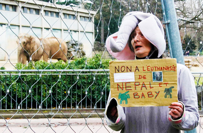 "A woman dressed in an elephant costume holds a sign during a protest demonstration against the death sentence of two ailing elephants at the Tete d'Or zoo in Lyon. The sign reads, ""No to euthanasia of Nepal and Baby"". -Photo by AFP"