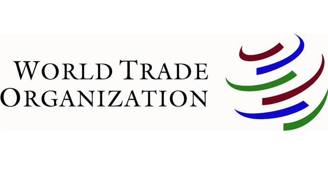 wto-600