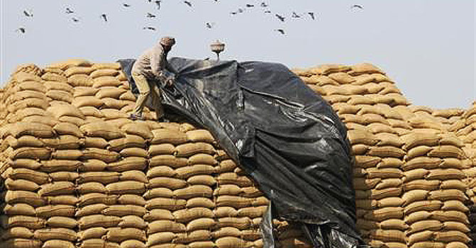A worker uses a plastic sheet to cover sacks of rice at a wholesale grain market in Chandigarh. —Photo (FIle) Reuters