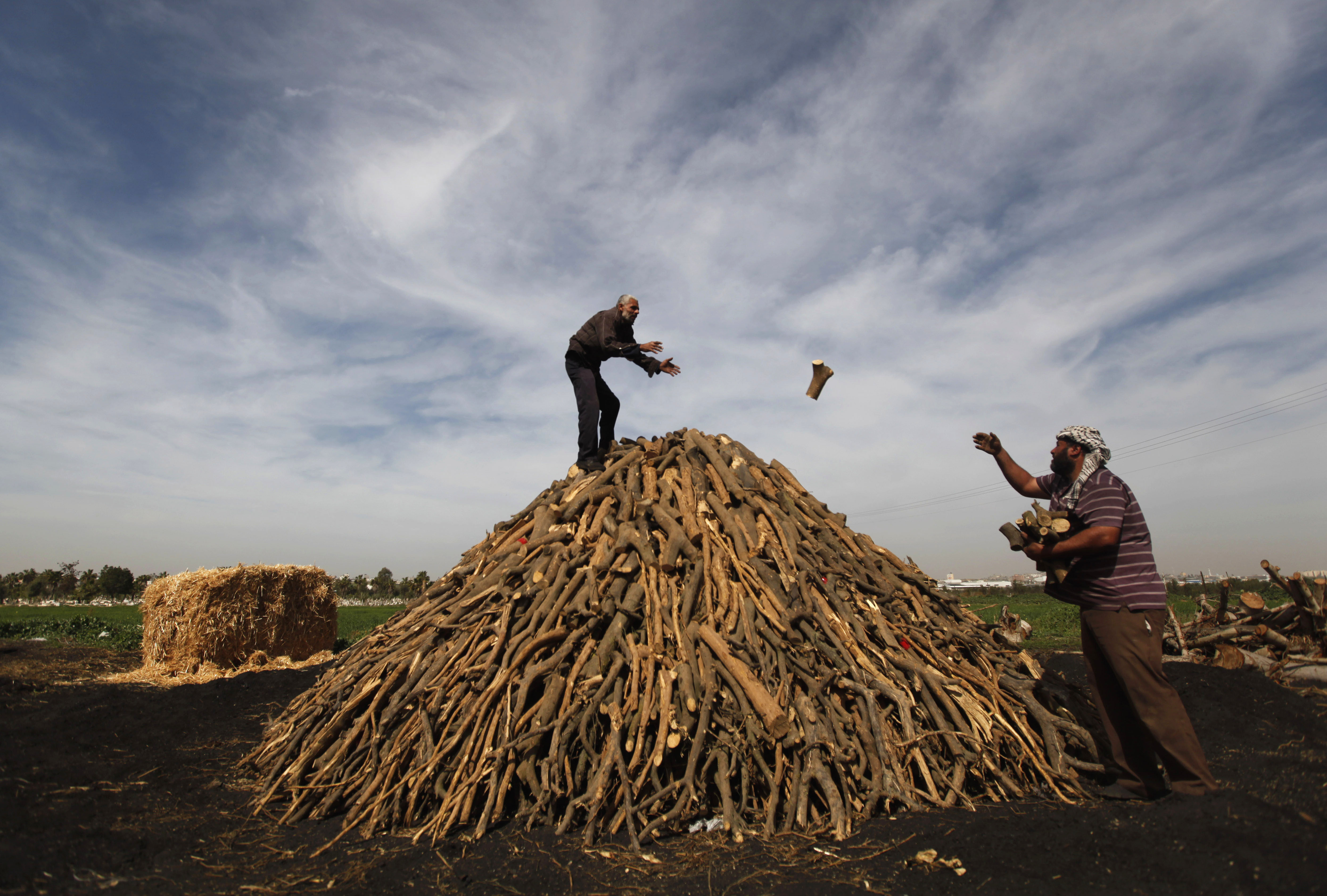 Workers collect wood to be burned and turned into coal at one of the few local charcoal manufacturing shops, east of Gaza City.