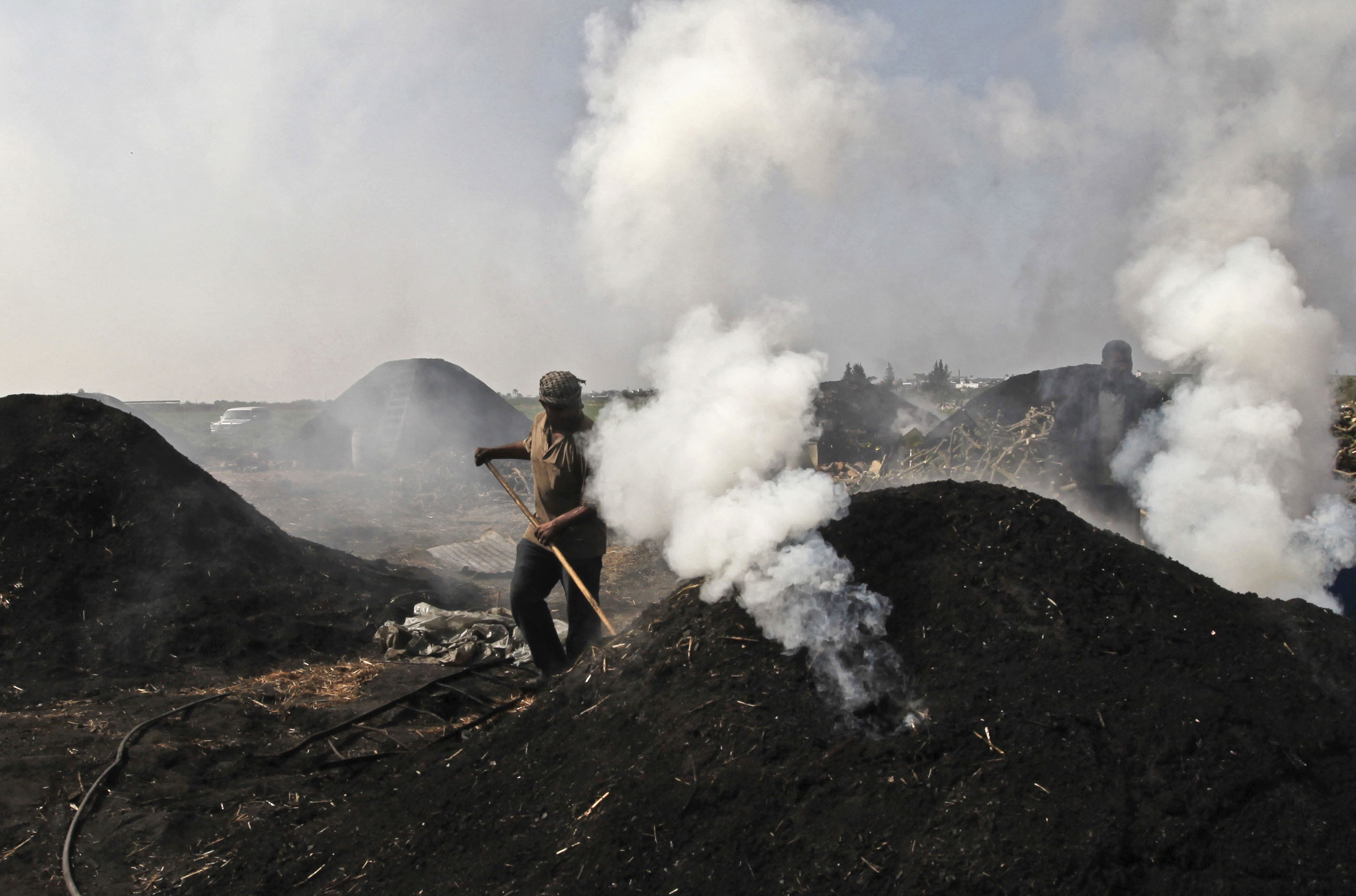 From Wood To Coal World Dawn Com