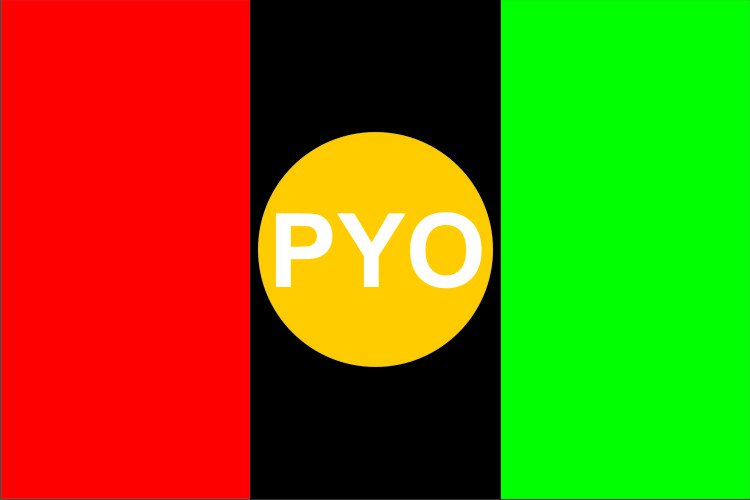 Flag of Peoples Youth Organization