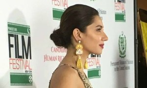 Pakistani celebs glam up the UN at our first film festival in New York