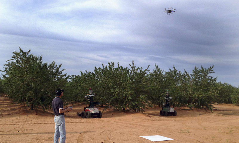 A scientist performs a field test with a 'Hexi-copter' air robot and two ground robots at an almond farm near Mildura