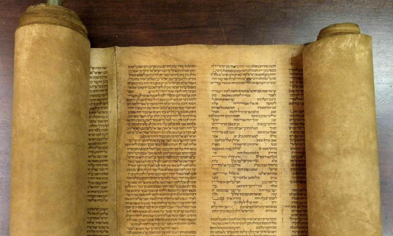 A scroll identified by Italian professor Mauro Perani as the world's oldest complete scroll of the Torah is seen in Bologna, central Italy, in this handout picture released to Reuters by Mauro Perani on May 29, 2013. — Reuters Photo